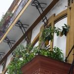 via Solimena 76 - mensole balconata