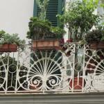 palazzo Martone - disegno ringhiera