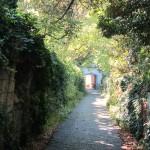 viale d'accesso