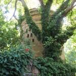 torre colombaria